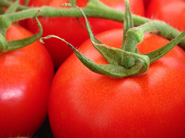 tomat, Aed, loodus, taim, punane, puu, köögiviljad