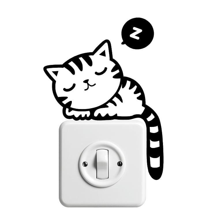 cat, kitten, pet, domestic cat, cat baby, young cat, snuggle