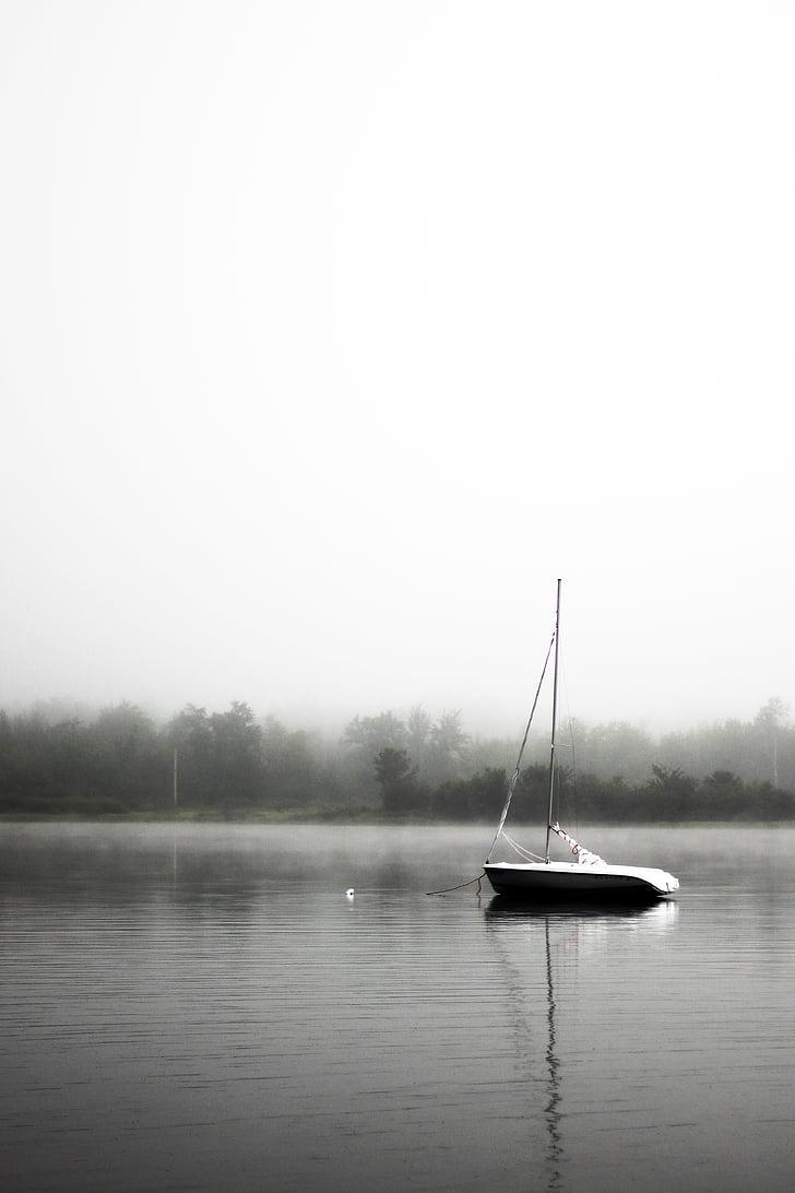 en blanc i negre, vaixell, calma, Llac, boira, tranquil, ones