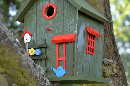 aviary, colorful, color, bird feeder, tinker, feeding, beautiful