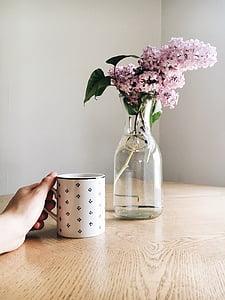 Zobrazit, růžová, květ, váza, voda, džbán, hrnek