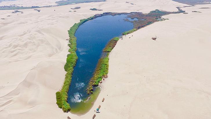 ICA, dykuma, Peru, ežeras, oazė, smėlio, pasižiūrėti