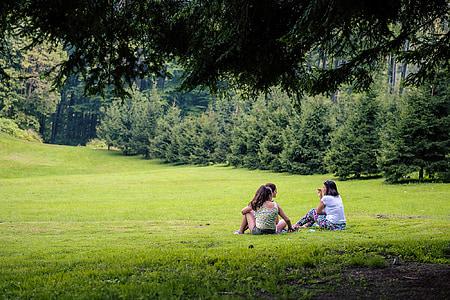 piknik, narave, dekleta, seje, trava, mladi, zdravo