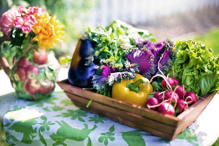 groenten, Tuin, oogst, organische, groen, Tuinieren, Sla