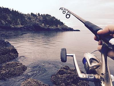 fishing, reel, casting, water, river, fisherman, fishing rod