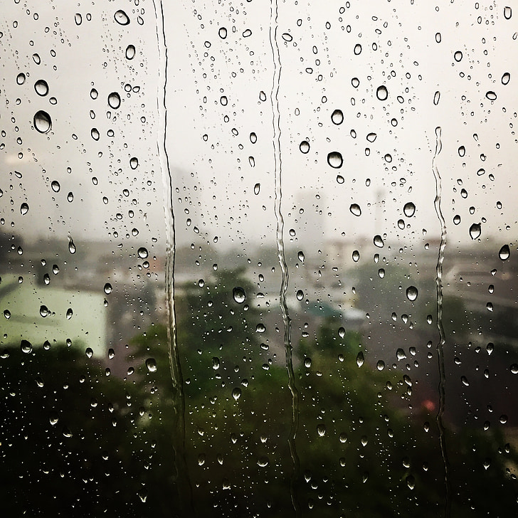 σταγόνες βροχής, βροχή, ψεκαστήρων, σιτάρι βροχή