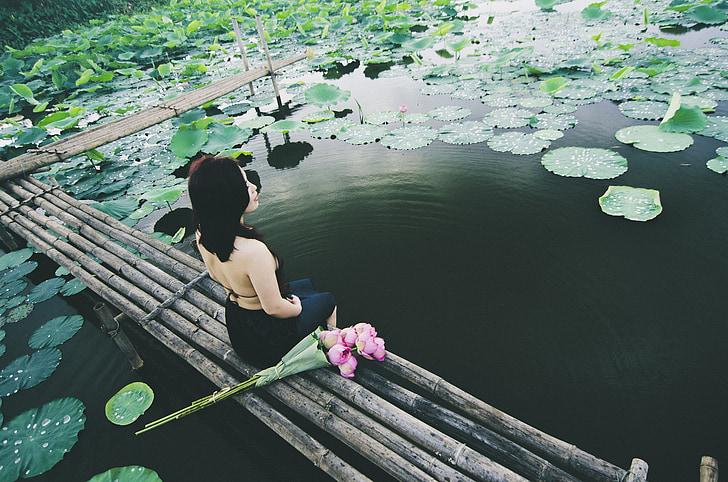sieviete, sēde, dīķis, Āzija, Lotus, rada, dzīvesveids