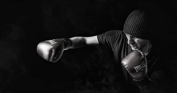 adult, atleta, en blanc i negre, Capó, boxejador, boxa, fosc