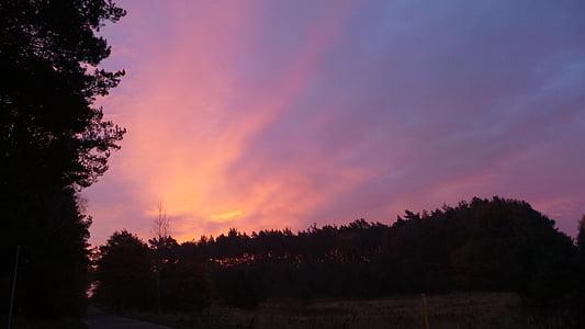 Alba, porpra, morgenstimmung, núvols, cels, cel, estat d'ànim