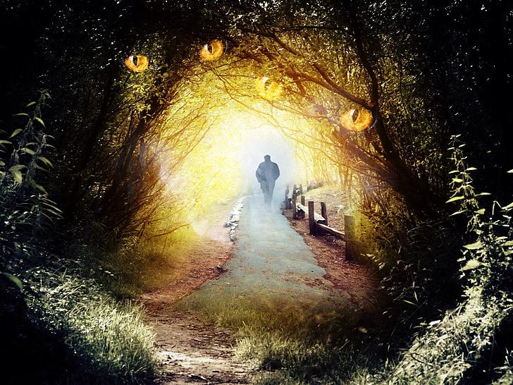 fantasy, magic, mystic, fantastic, glowing, illumination, bright