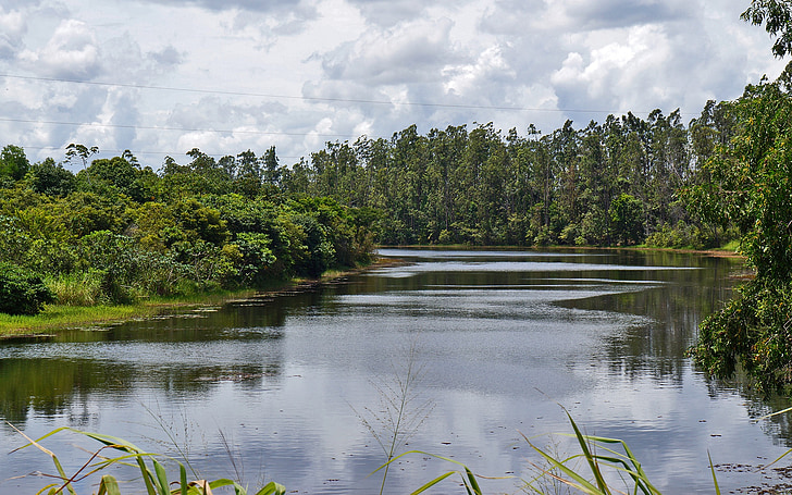 kraštovaizdžio, ežeras, Gamta, vandens, medis, Harmonija