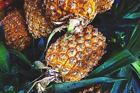 植物, 水果, 菠萝, 新鲜, 食品, 健康, 自然