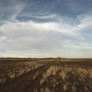 paisatge, a l'exterior, camp, turons, desert, camí, caminada