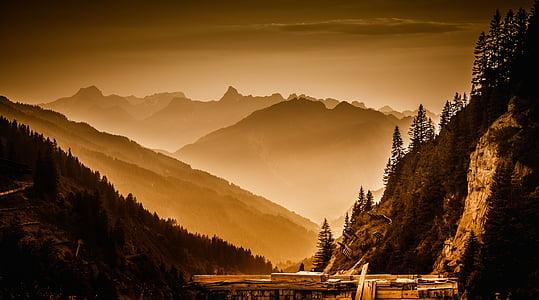 marró, bosc, muntanya, a prop, fusta, Pont, diürna