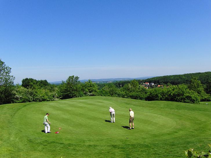 golf, golf club, rush, golf turf, sport, golfer, putten