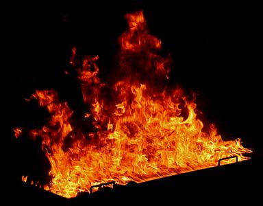 foc, calenta, flama, cremar, incendi, calor, perillós