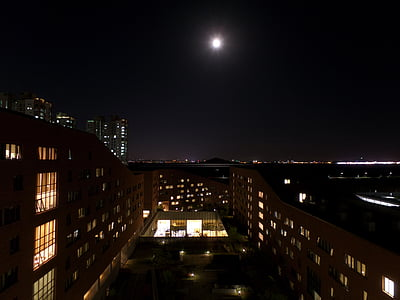 the night sky, moon, night view, atmosphere, in the evening, full moon, night