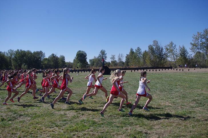país creu, cursa, Inici, línia de sortida, corredors, XC, atleta