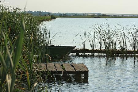 paisatge, Llac, passeig marítim, al costat del llac