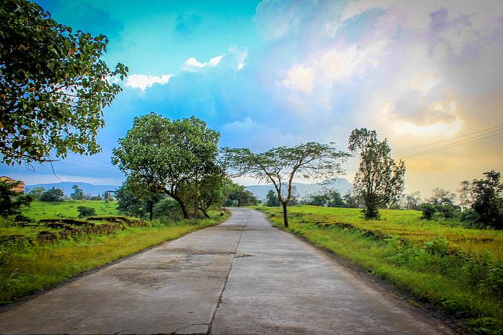 nature, landscape, fantasy, india, fields, land, road
