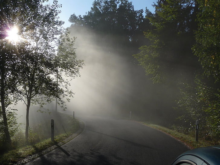 boira de matí, paisatge, boira, boira, carretera