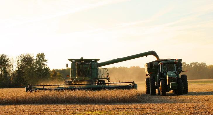 collita, Segadora, treball en equip, la collita, soja, l'agricultura, l'agricultura