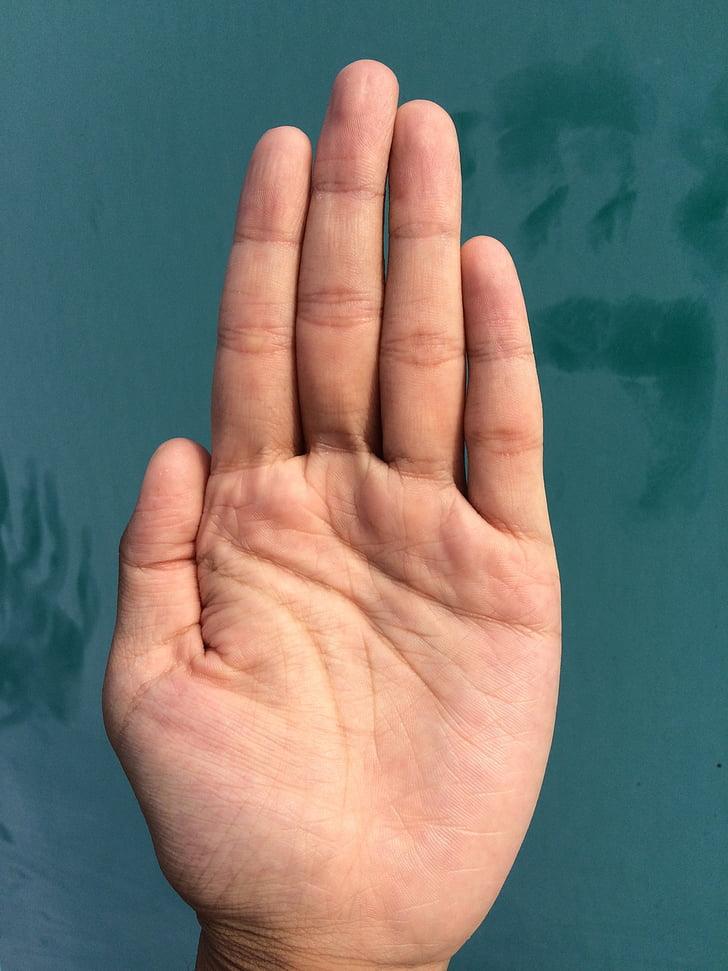 Palm, hand, vinger, bleken, Palm lezen, jonge, Japans