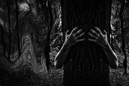 dark, mystery, forest, horror, dreamy, outdoors, tree