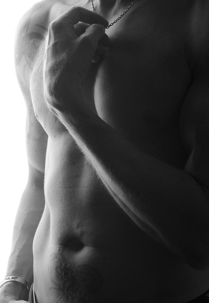 home, cos, mascle, músculs, tatuatge, tatuatges, figura masculina