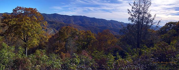 manzara, Blue ridge parkway, dağlar, doğa, Orman, dağ, ağaç
