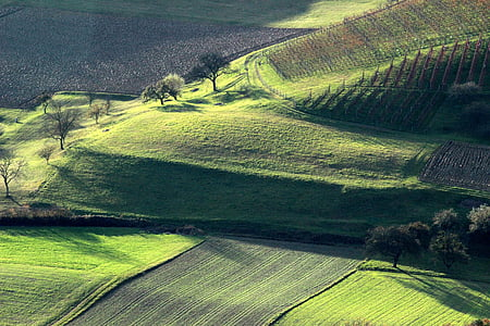 autumn landscape, green, autumn, landscape, hills, nature, light and shadow