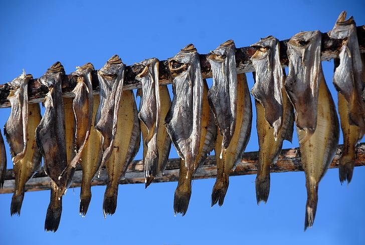 Grenland, dörr ribe, riba, plodovi mora, sušena riba, sušenje, Ribarska industrija