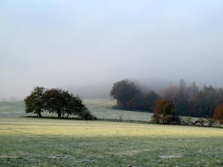 autumn, cold, green, sadness, landscape, petrov, frost
