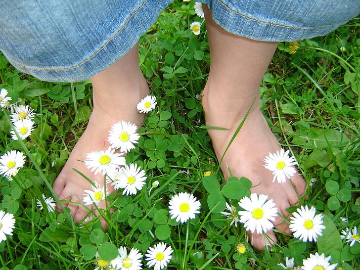 Margarida, peus infantils, Prat, primavera, descalç, peus