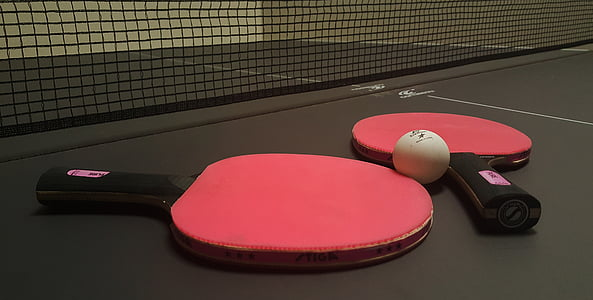 ping pong, paddles, table, games, sports, play, net