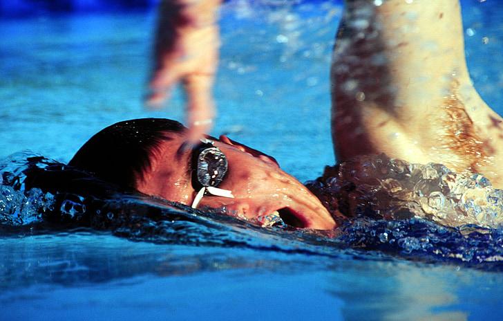 nedador, formació, l'aigua, piscina, ulleres, gimnàs, mascle