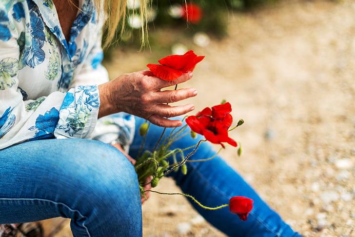 hands, women, flowers, wild, wild flowers, flower, nature