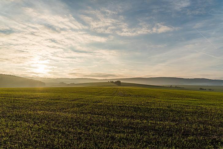 Príroda, priestranné, pole, lúka, západ slnka, Sky, poľnohospodárstvo