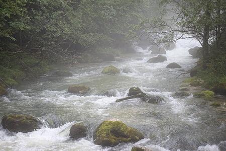 l'aigua, boira, riu