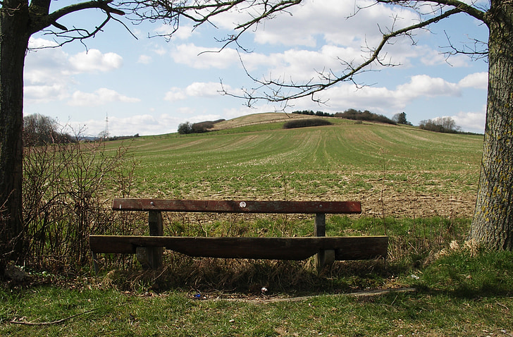 bank, wooden bench, bench, nature, out, click, seat