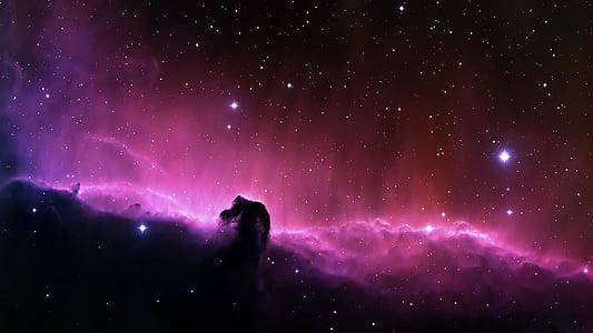 porpra, estrella, pols, cel, espai, nebulosa fosca, cel de nit