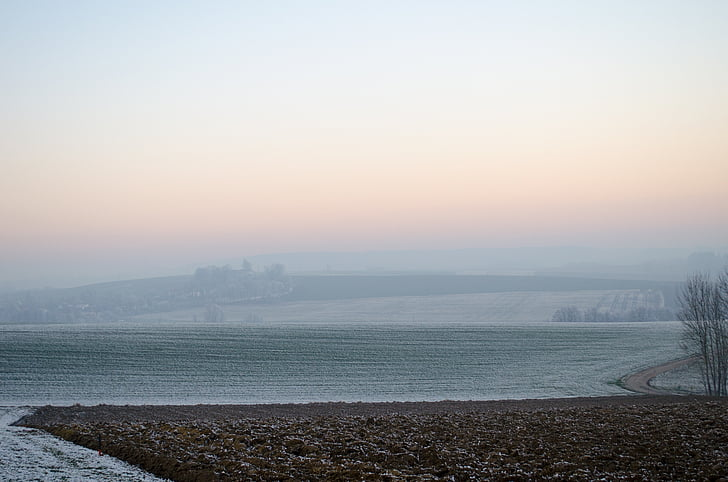 wintry, fog, ripe, hoarfrost, landscape, cold, ice