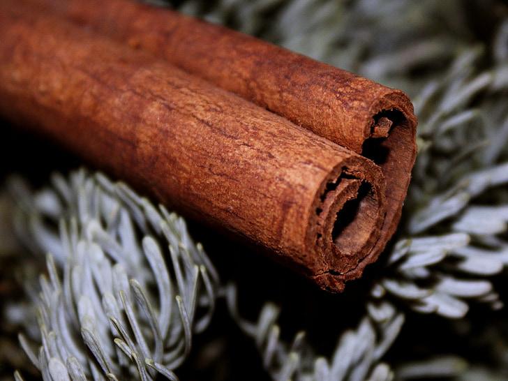 シナモンの棒, シナモン, 茶色, モミ, 出現, クリスマス, 香り
