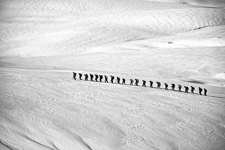 doğa yürüyüşü, Hiking, Grup, Alp, satır, insanlar, macera