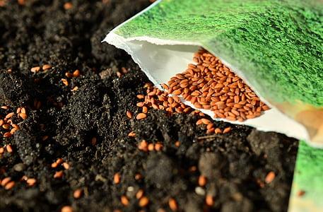 seemned, külvata, Aed, rist, aiandus, Aed mulla, maa