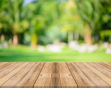 Sunshine, Woods, prkno, dřevo - materiál, strom, venku, den