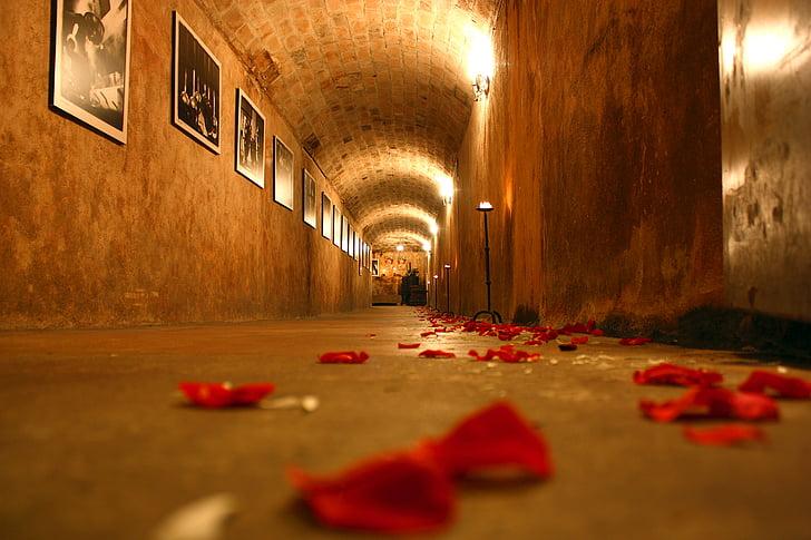 cellar, tunnel, rose, marriage, rosa, formal wear, stones
