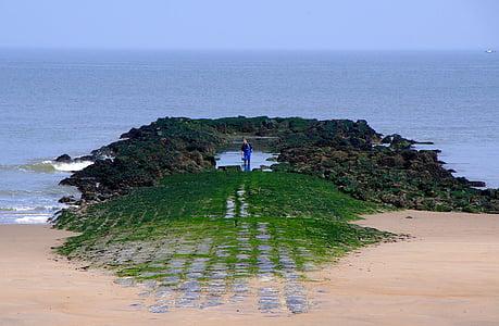 angler, sea, belgium, coast, fischer, fish, fishing