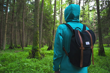 adventure, backpack, forest, hike, leaves, man, nature