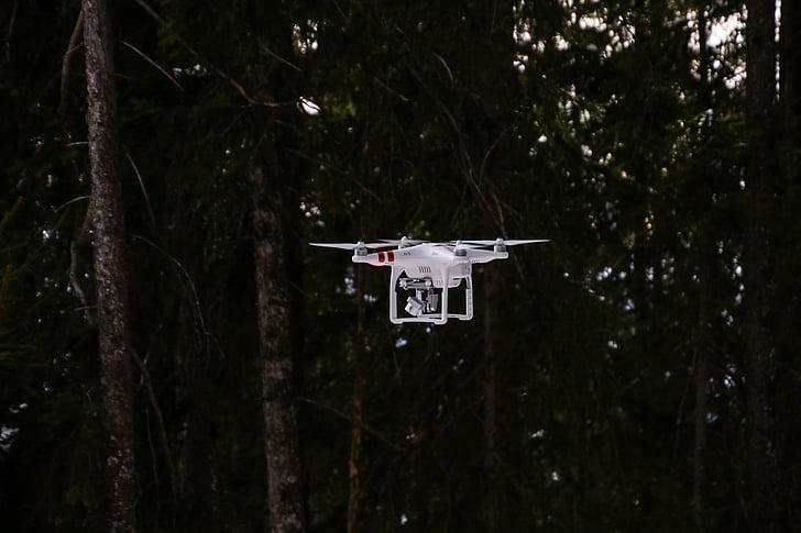 drone, drone phantom 3, drone phantom, aerial view, fly, nature, forest